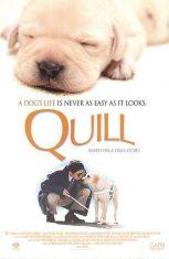 Quill: The Life of a Guide Dog (2004) โฮ่งฮับ เจ้าตัวเนี้ยซี้ร้อยเปอร์เซ็นต์